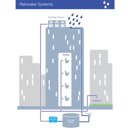 Rainwater Schematic